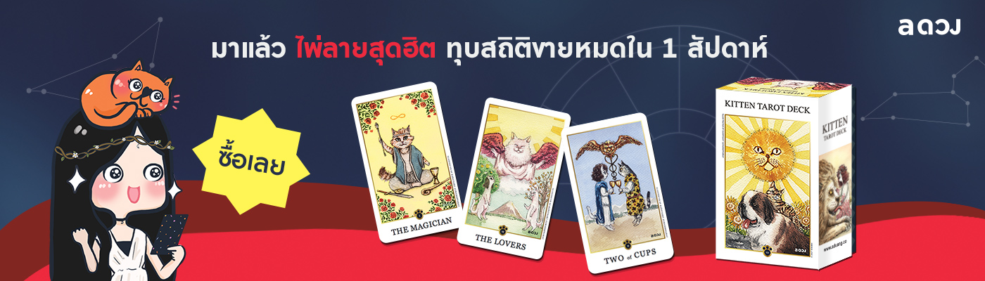 KITTEN TAROT DECK